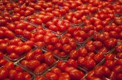 De Tomaten van de kers bij de Markt stock foto's