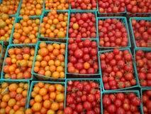 De Tomaten van de kers met half en halve kleuren Stock Afbeeldingen