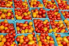 De tomaten van de kers op vertoning Royalty-vrije Stock Afbeelding