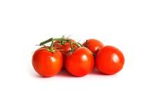 De Tomaten van de wijnstok die op Wit worden geïsoleerd Royalty-vrije Stock Fotografie