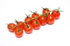 De tomaten van de wijnstok die op wit worden geïsoleerdo royalty-vrije stock foto's