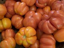De tomaten van het erfgoed Stock Foto