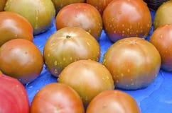 De tomaten van het erfgoed royalty-vrije stock afbeelding