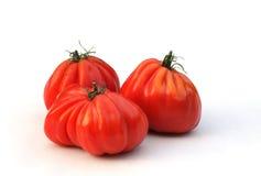 De tomaten van Oxheart op wit Stock Afbeeldingen
