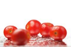 De Tomaten van Succullent Royalty-vrije Stock Afbeeldingen