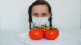 De Tomaten van wetenschapperSpraying GMO met Chemische producten stock footage
