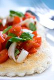 De tomatensalade van de pruim, royalty-vrije stock afbeelding