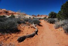 De toneel Sleep van de Woestijn Stock Fotografie