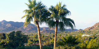 De toneel Vallei van Scottsdale, Az en van het Paradijs Royalty-vrije Stock Afbeelding