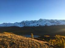 De toneelkurai-mening van steppebergen De Bergen van Altai De gouden herfst in Altai, Rusland stock afbeelding