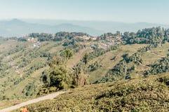 De toneellandschappen van de Centrale Provincie zijn behandeld met groene theeinstallaties Sri Lanka-reisfoto brede populariteit  stock fotografie