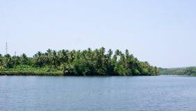 De toneelmening van binnenwateren van Kerala met kokospalmen op het is banken Stock Foto's
