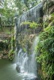 De toneelmening van Kuala Lumpur Bird Park, het is ook goed - gekend als `-Walk-in Vogelhuis ` van de Wereld` s Grootste vrij-Vlu Stock Fotografie