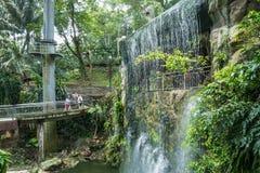 De toneelmening van Kuala Lumpur Bird Park, het is ook goed - gekend als `-Walk-in Vogelhuis ` van de Wereld` s Grootste vrij-Vlu Stock Afbeelding