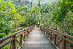 De toneelmening van Kuala Lumpur Bird Park, het is ook goed - gekend als `-Walk-in Vogelhuis ` van de Wereld` s Grootste vrij-Vlu Stock Foto's