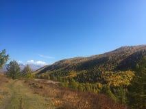 De toneelmening van steppebergen De Bergen van Altai De gouden herfst in Altai, Rusland royalty-vrije stock foto's