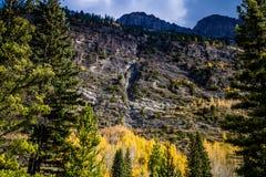 De toneelmeningen van het Brede rijweg met mooi aangelegd landschap van het Ijsgebied, het Nationale Park van Banff stock fotografie