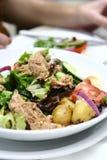 De tonijn nicoise salade stock afbeeldingen
