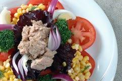 De tonijn van de salade Stock Afbeelding