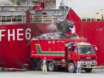 De tonijn van de vrachtwagenlading in Gensan-Stad, de Filippijnen stock foto's
