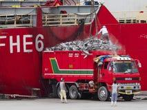 De tonijn van de vrachtwagenlading in Gensan-Stad, de Filippijnen royalty-vrije stock foto