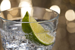 De Tonische Cocktail van de jenever Royalty-vrije Stock Foto