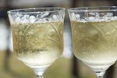 De Toost van Champagne Royalty-vrije Stock Foto's