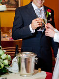 De toost van het huwelijk Royalty-vrije Stock Fotografie