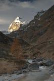 De Top van de berg Royalty-vrije Stock Foto's