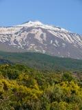 De top van Onderstel Etna stock foto