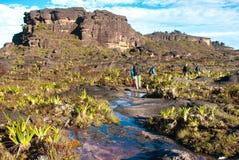 De Top van Roraimatepui, Gran Sabana, Venezuela Royalty-vrije Stock Foto's