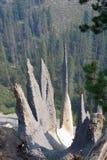 De Toppen bij Kratermeer Stock Afbeeldingen