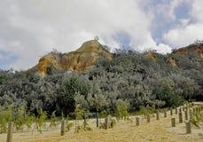 De Toppen, Fraser Island stock afbeeldingen