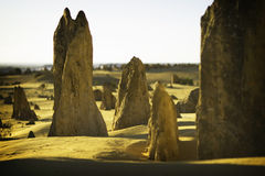 De Toppen van het kalksteen Stock Afbeeldingen