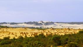 De Toppenwoestijn - Westelijk Australië royalty-vrije stock afbeeldingen
