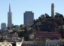 De Toren en TransAmercia van Coit Stock Afbeelding