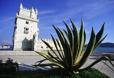 De Toren van Belem Stock Foto