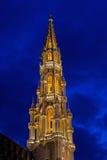 De Toren van Brussel bij Nacht Stock Afbeeldingen