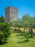 De Toren van Cicero'n ` s in Arpino, oude stad in de provincie van Frosinone, Lazio, centraal Italië stock foto's