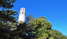 De Toren van Coit Stock Foto's