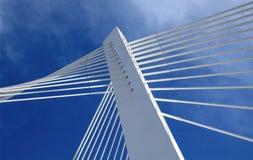 De toren van de brug Stock Afbeeldingen