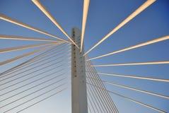 De toren van de brug royalty-vrije stock foto's