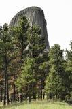 De Toren van de duivel Stock Afbeelding