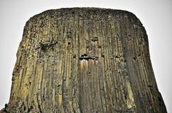 De Toren van de duivel Stock Fotografie