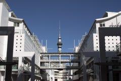 De Toren van de Hemel van Auckland Royalty-vrije Stock Afbeelding