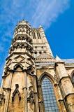 De toren van de kathedraal Stock Fotografie