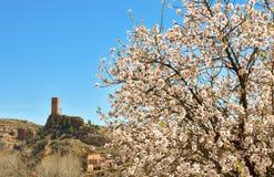 de toren van een oud geruïneerd kasteel in een klein dorp riep Villel in Teruel/Spanje in een zonnige duidelijke dag met de menin royalty-vrije stock afbeelding