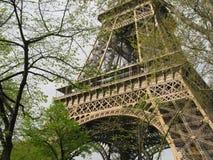 De toren van Eiffel achter bomen Stock Afbeelding