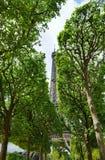 De toren van Eiffel achter de bomen wordt verborgen die stock afbeeldingen