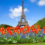 De Toren van Eiffel bij de lente, Frankrijk Royalty-vrije Stock Afbeeldingen